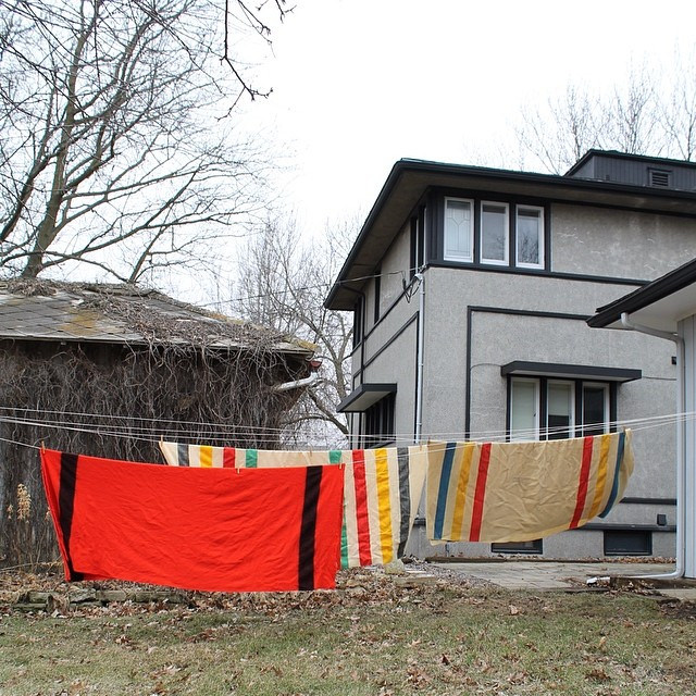 Pendleton wool blankets dry on a clothesline in the backyard