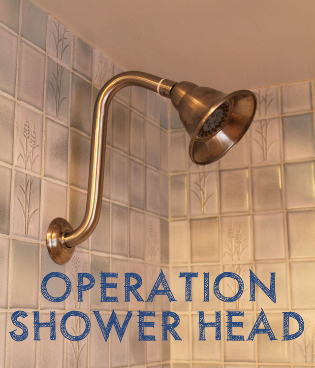 shower-head1