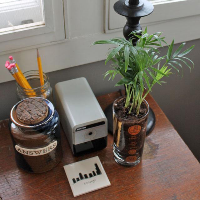 030314-plants4