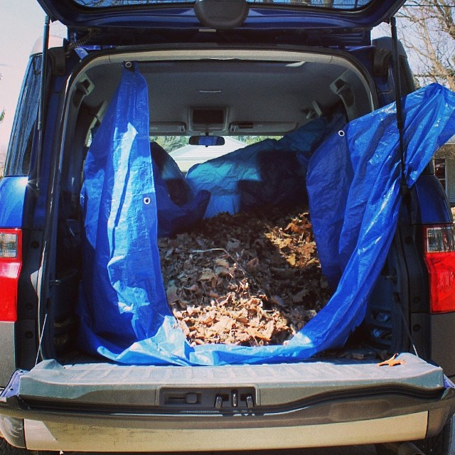 Our Honda Element prepped for collecting leaves